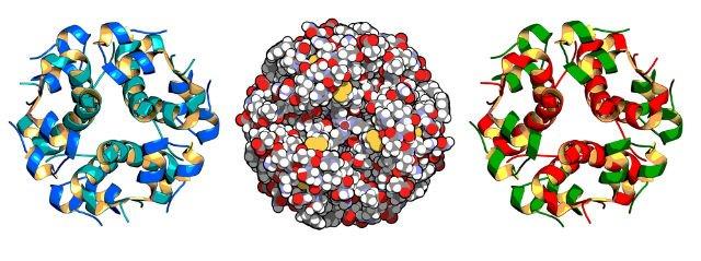 peptides.jpg