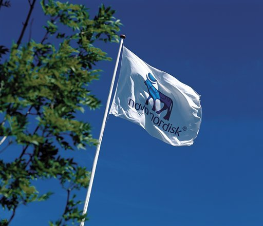 novo flag.jpg