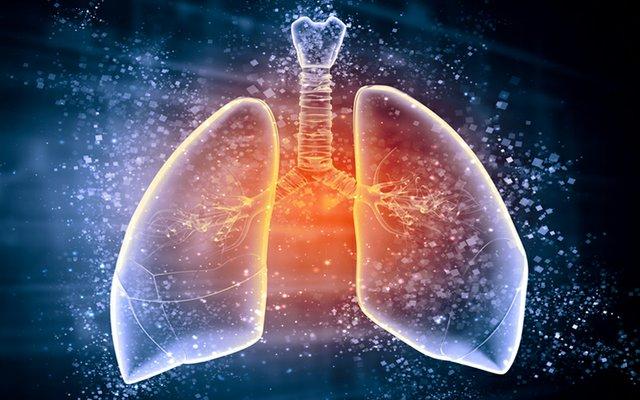 Drug instilled into lungs.jpg