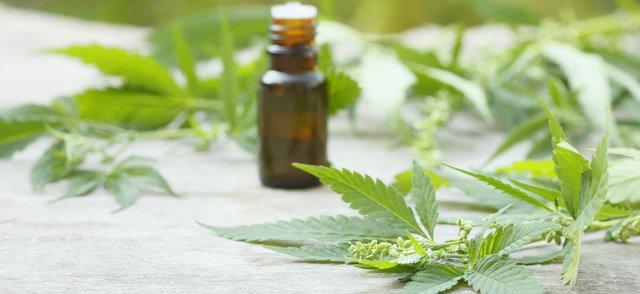 Legalised Cannabis
