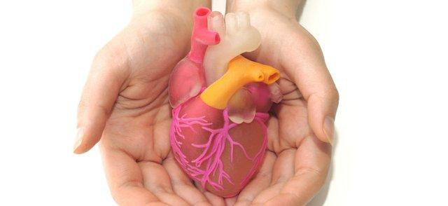 Bioprinted heart.jpg