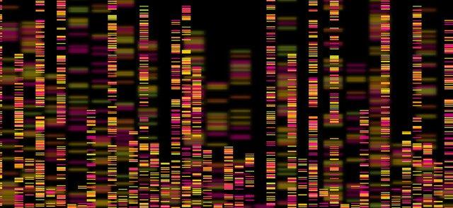 genomics1.jpg