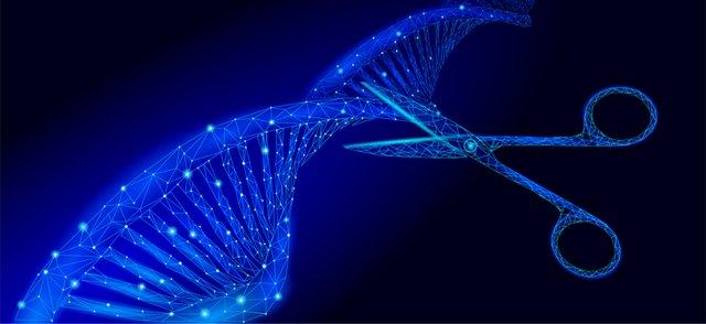 gene editing.jpg